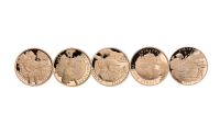 5_Coin_Full_Sovereign_Set