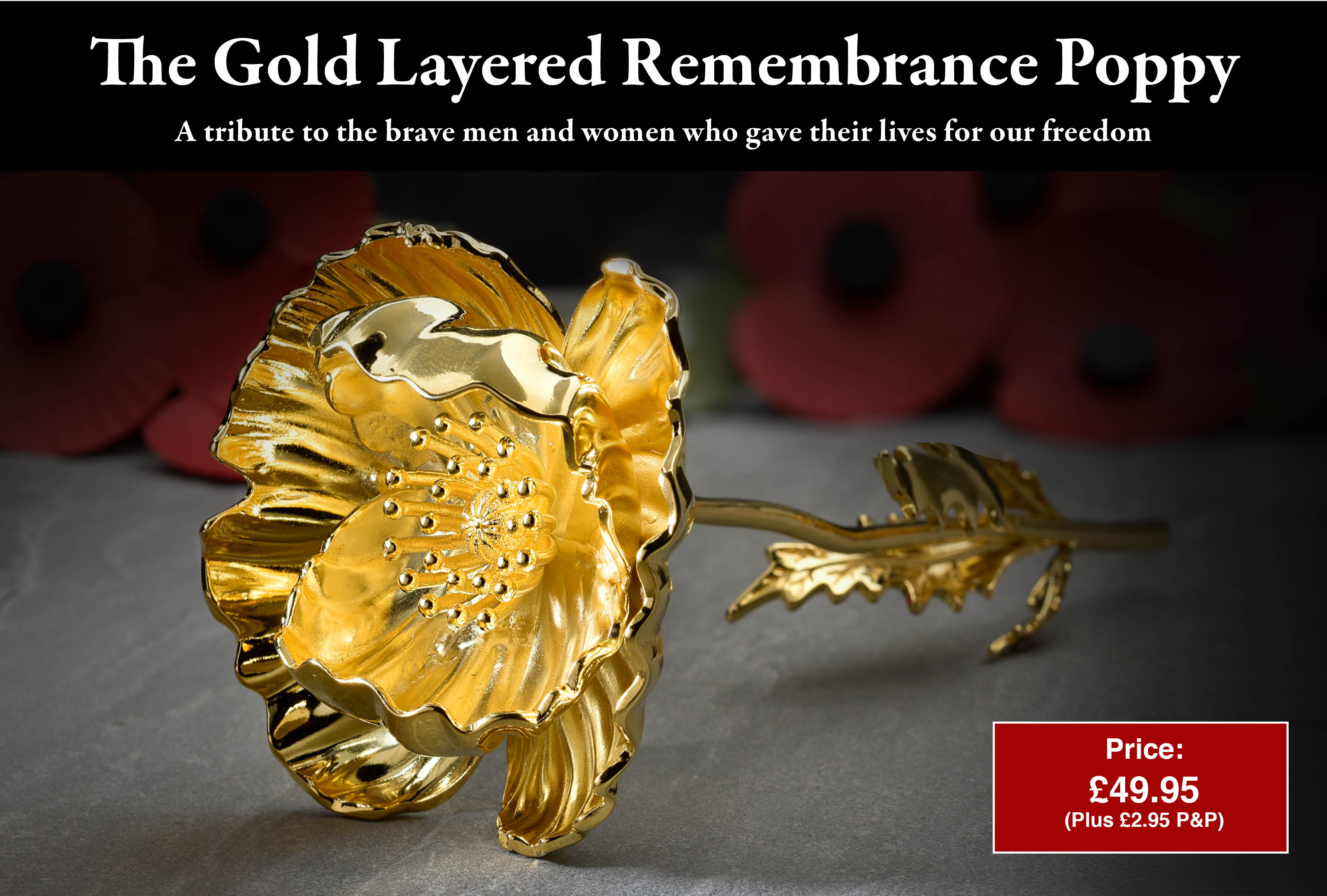 The Remembrance Gold Layered Poppy