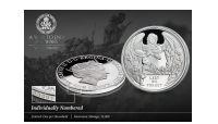 Ypres Centenary Numbered Coin